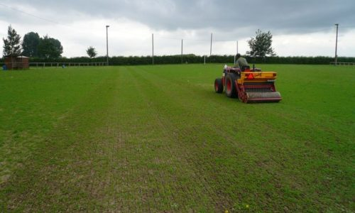 Traditional regeneration by overseeding: advice from a pro