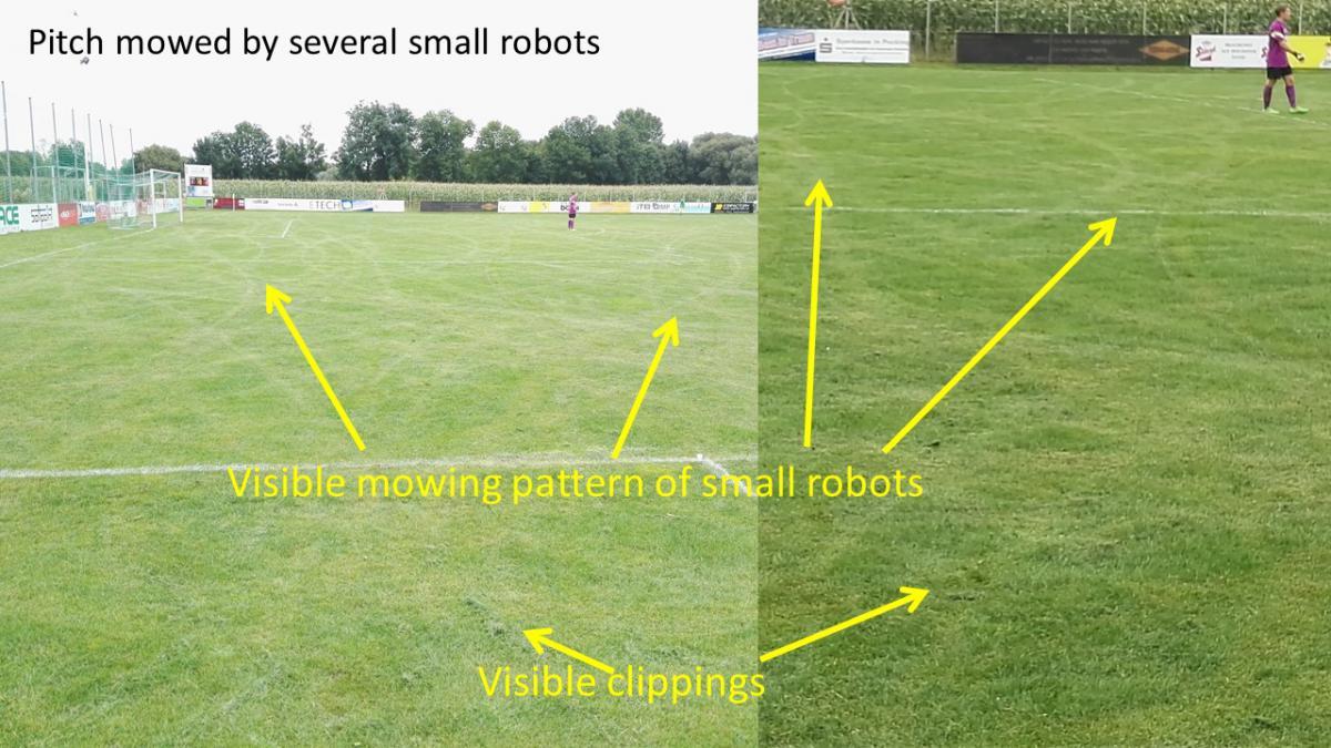 Terrain tondu par plusieurs petits robots